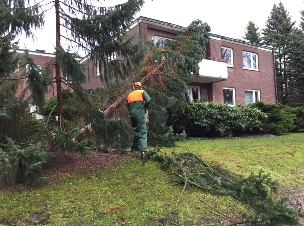 Sturmschaden Reinbek